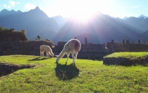 portada 1 que ver en Perú