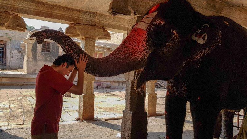 elefanta en templo virupashka hampi