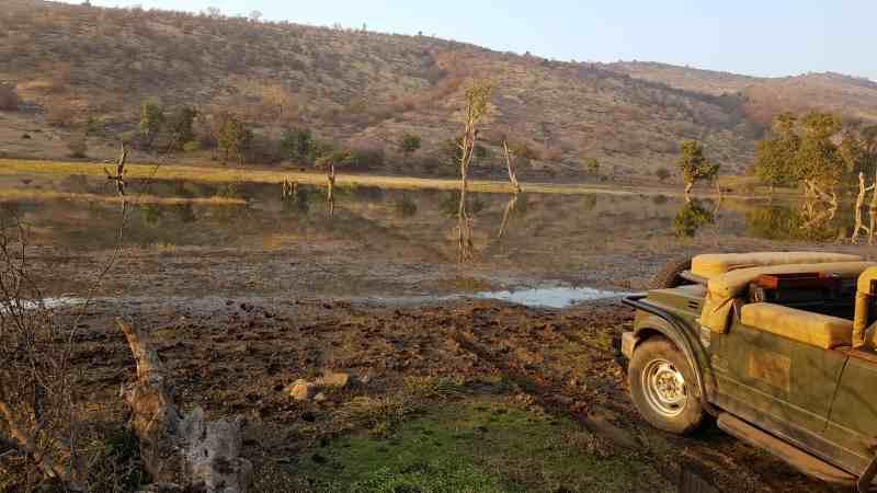 parque nacional Ranthambore