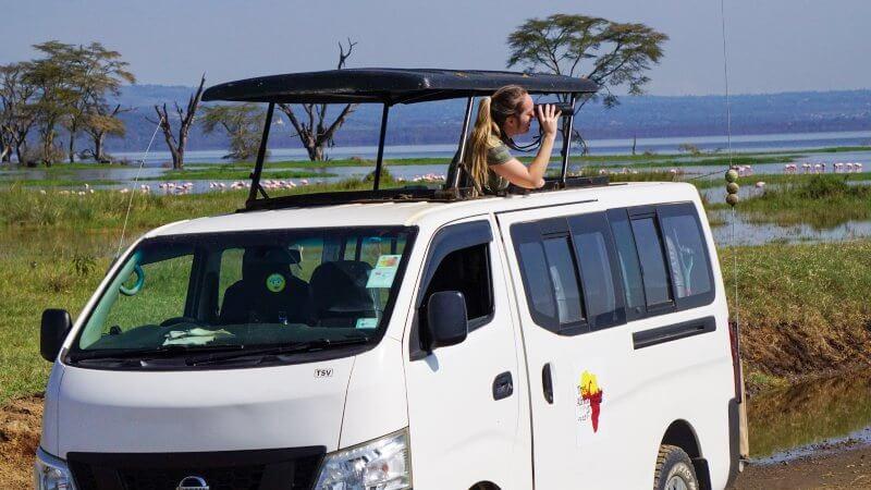 safari barato en Kenia - cómo hacerlo